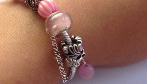 Photo Credit: Charming Bracelets Website